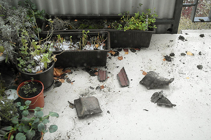 Dachziegel auf den Pflanzen