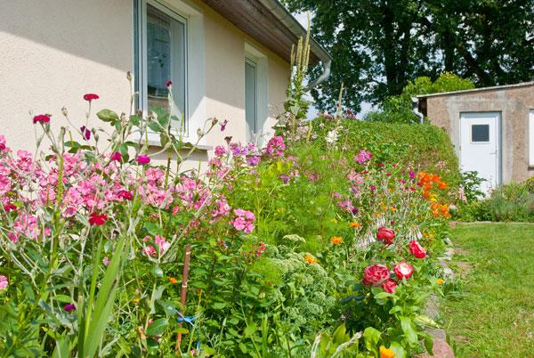 Garten vor dem Wohnzimmer