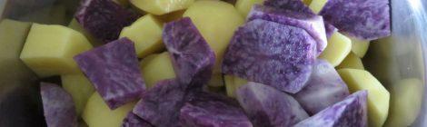 Kochtopf mit bunten Kartoffeln