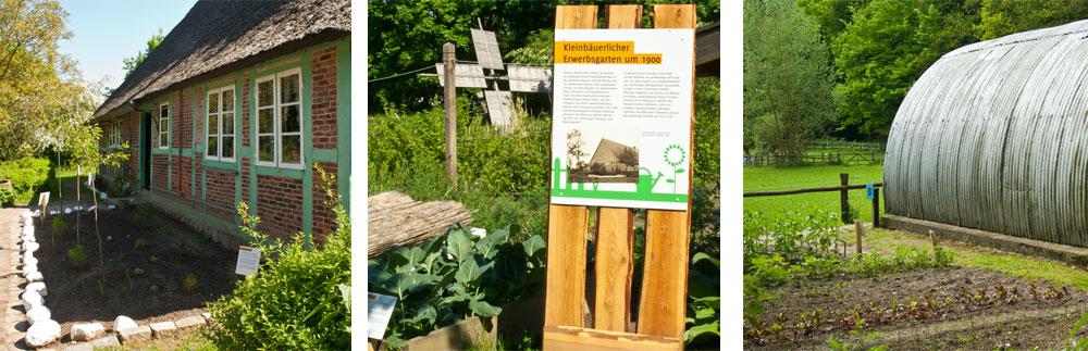 Pflanzenausstellung im Freilichtmuseum am Kiekeberg