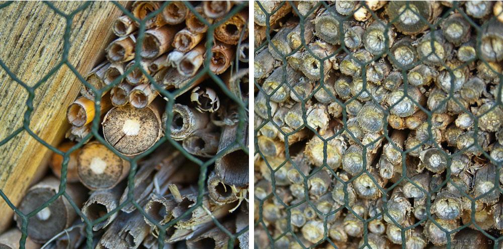 Detail des Insektenhotels