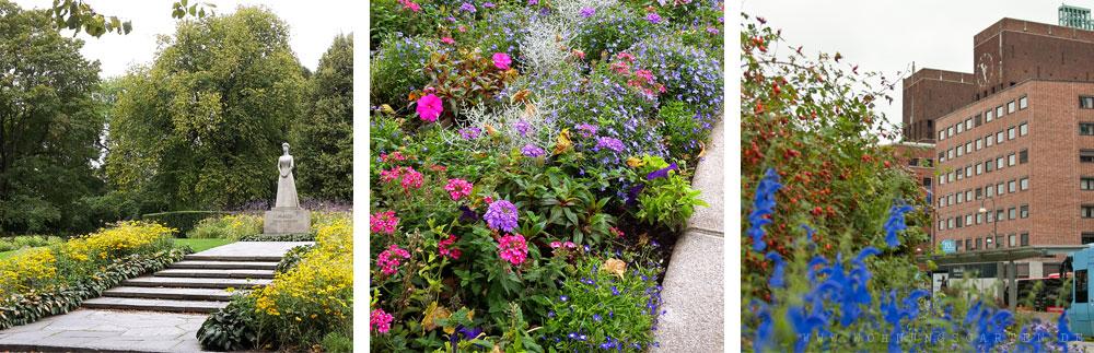 Blumen in den Straßen von Oslo