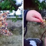 Kinderbasteln: Vogelfutteranhänger im Januar
