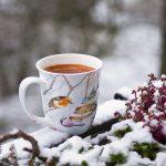 Ein Tag im Winter