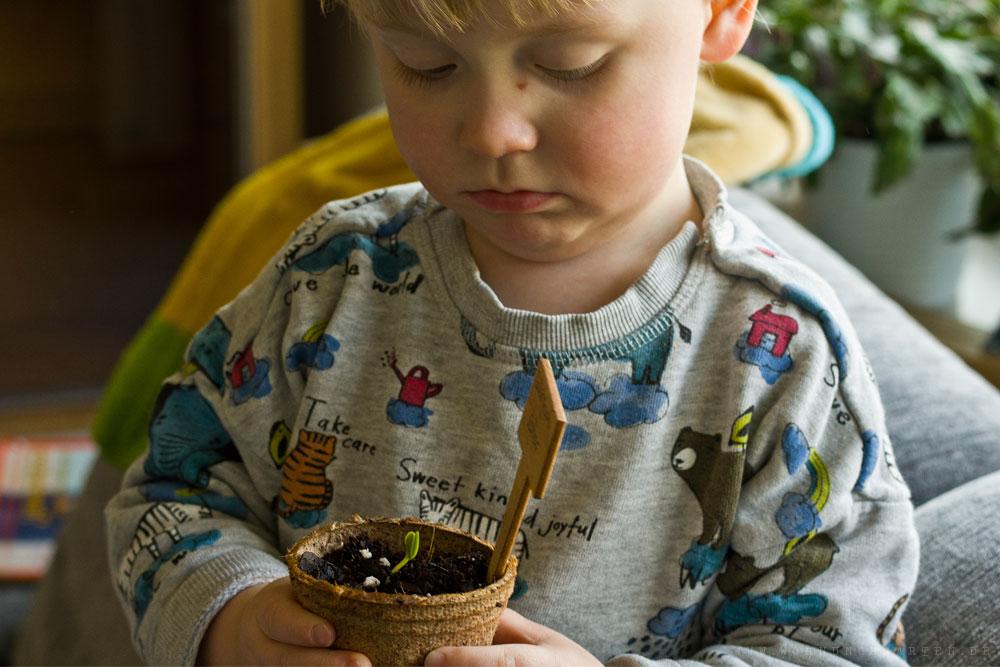 Tristan mit der ersten Gurke