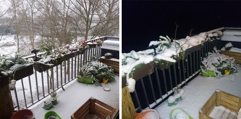 Alles eingeschneitim Februar