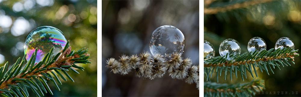 ungefrorene Seifenblasen
