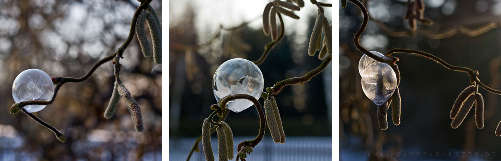 Verschiedene gefrorene Seifenblasen