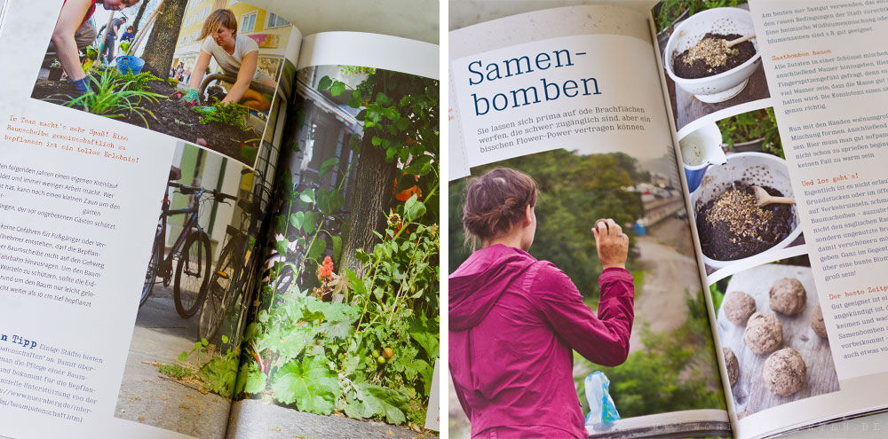 Mein kleiner Stadtgarten - Buchausschnitt