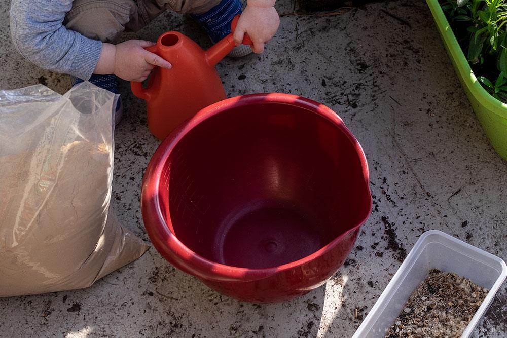 Vorbereitung für die Samenbomben