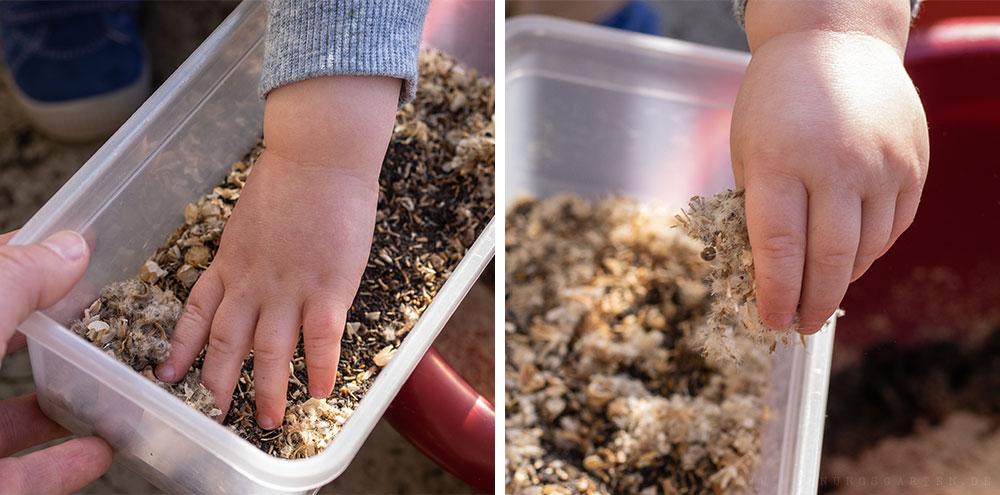 Saatgut zur Erde hinzufügen