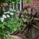 Eine fotografische Reise durch das Museumsdorf Volksdorf