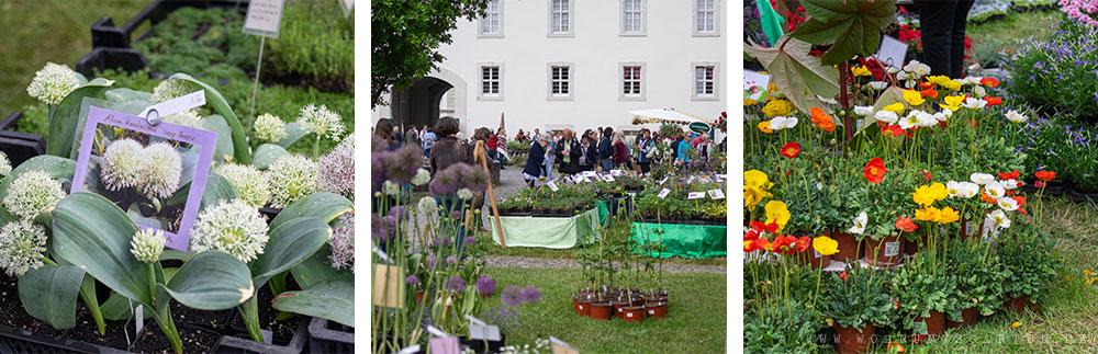 Gartenfest Impressionen