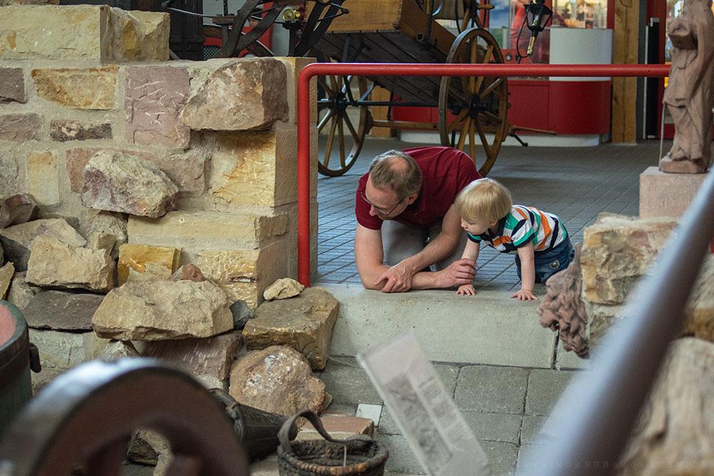Julian und Tristan beobachten die Spinnen