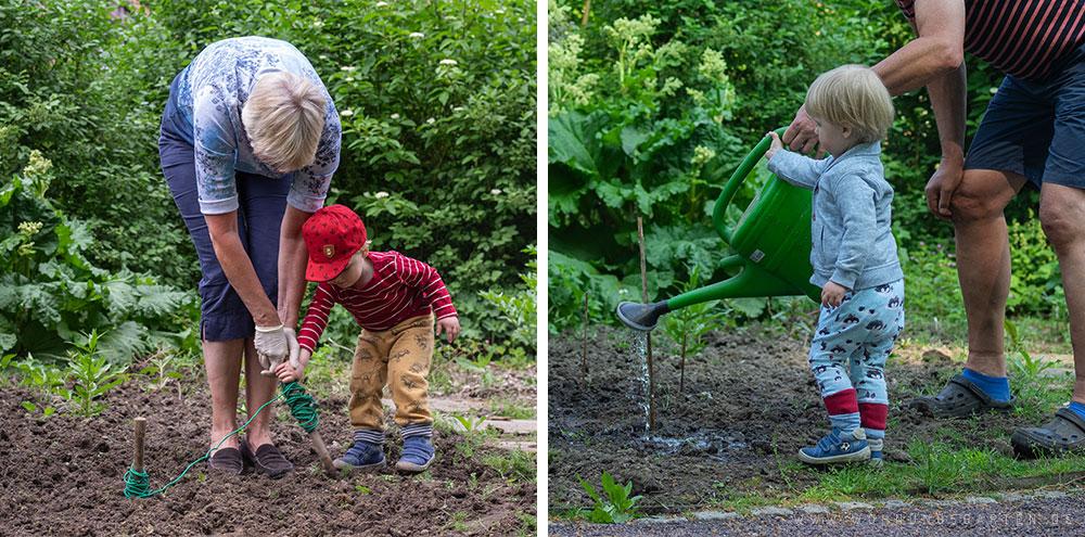 Gartenarbeit mit Oma und Opa